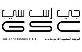 logo option plain color gsc